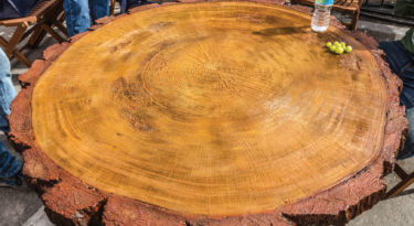 4 Log Round Table Top Mold Sample