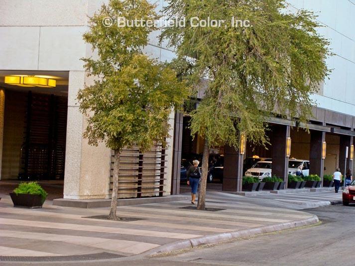decorative concrete streetscape
