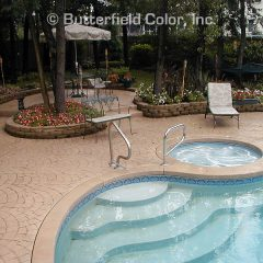 Large Stone Fan Stamp Pool Deck