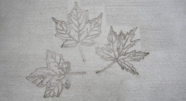 Maple Leaf Cluster Stamp Sample