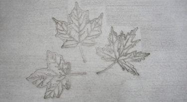 Maple Leaf Cluster Stamp Sample