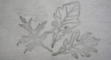 Oak Leaf Cluster Stamp Sample