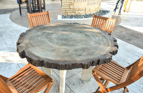 4ft Log Round Table Mold_003 1